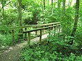 Bridge in the Woods - panoramio (2).jpg