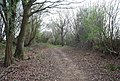 Bridleway approaching Holton Hill - geograph.org.uk - 1253673.jpg