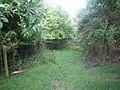 Bridleway near Manor Farm 3 - geograph.org.uk - 906253.jpg