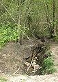 Brook running through Haugh Wood - geograph.org.uk - 1274322.jpg