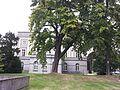 Brussels-Paleis der Academiën (1).jpg