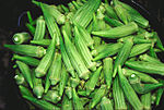 Bucket of raw okra pods.jpg
