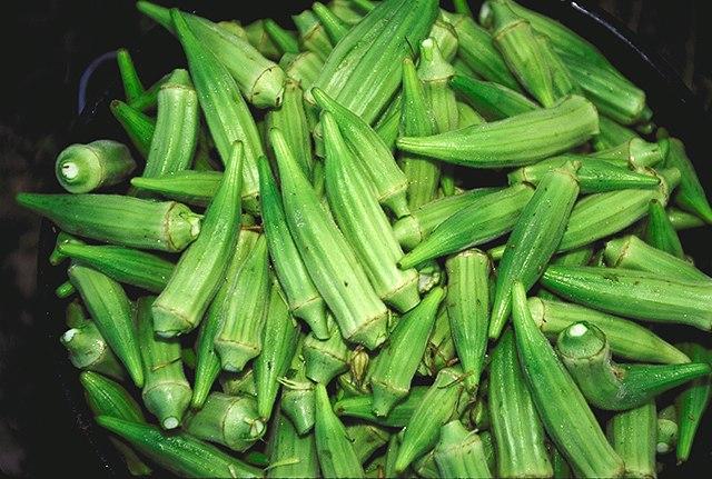 Bucket of raw okra pods