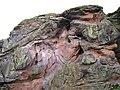 Buddo Rock - panoramio.jpg
