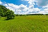 Buffalo River Trail Prairies.jpg