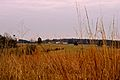 Bull Run at Manassas National Battlefield Park 09.JPG