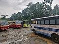 Buses at Thodupuzha KSRTC bus stand, Kerala, India.jpg