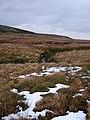 Byrlymau Elan - geograph.org.uk - 1032689.jpg