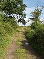 Byway by Winning Foot Hill near Oundle - geograph.org.uk - 528091.jpg