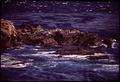 CALIFORNIA-MONTEREY BAY - NARA - 543306.tif