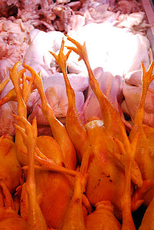 Chow Kit - Image: CHICKEN 1 0050