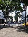 Calle Pichincha 2020.jpg
