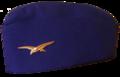 Calot armée de l'air.png