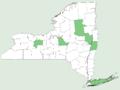 Calystegia sepium ssp americana NY-dist-map.png