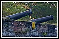 Cannons protecting Penang Harbour (5476166326).jpg