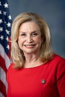 Carolyn Maloney, offizielles Porträt, 116. Kongress.jpg