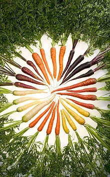Six Colors of Carrots