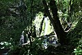 Cascade Ruisseau Balme Corveissiat 4.jpg