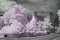 Castello di Vignola - infrarosso.jpg