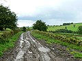 Caution - mud on road - geograph.org.uk - 941235.jpg