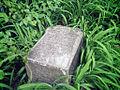 Charles Hageman & Minna headstone Bachelor's Grove 2007.jpg