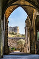 Chartreuse Notre-Dame-du-Val-de-Bénédiction Abbaye Saint André DSC5935.jpg