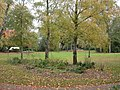 Cheadle, park - geograph.org.uk - 1549761.jpg