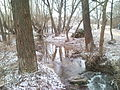 Chetvertynivka Batig River.jpg