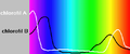 Chlorofilab.png
