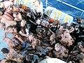 Chrzest morski 1.JPG