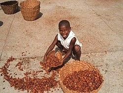vem uppfann choklad