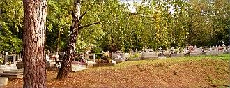 Lorinčík - Image: Cintorín panoramio (2)