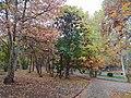 Circular Park of Yerevan in November.jpg