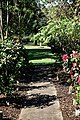 City of London Cemetery Memorial Garden paved path and lawn 1.jpg