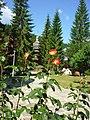 Clopotnița de lemn a Mănăstirii Durău.jpg