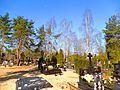 Cmentarz Opatrzności Bożej w Toruniu4.jpg
