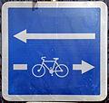 Colmar, unudirekta vojo, dudirekta por bicikloj, 1.jpeg