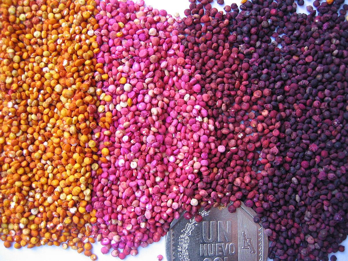 Semillas comestibles - Wikipedia, la enciclopedia libre