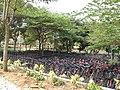 Common bicycles in Infosys Mysore (1).JPG