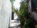 Comunidad San Antonio, San Salvador, El Salvador - panoramio (5).jpg