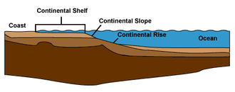 Continental margin - Profile illustrating the shelf, slope and rise