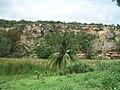 Coqueiro em Travessão de São Gabriel - BA - panoramio.jpg