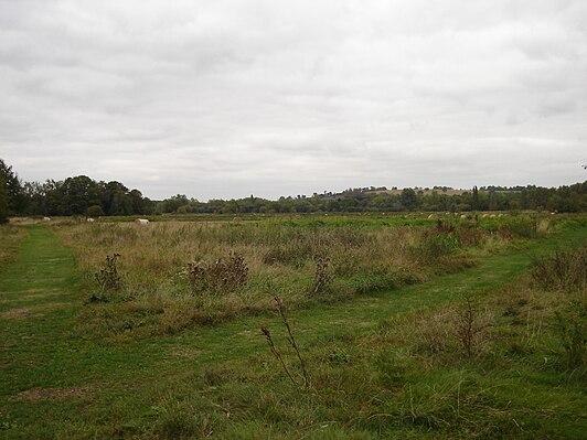 Cornmill Stream and Old River Lea