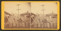 Cotton Depot (showing cotton bales in a yard), from Robert N. Dennis collection of stereoscopic views.png