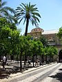 Cour intérieure de la Mosquée de Cordoue.jpg