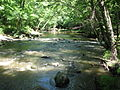 Crabtree Creek Company Mill Trail Umstead NC SP 0044 (3582926023).jpg