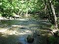 Crabtree Creek Company Mill Trail Umstead NC SP 0044 (3582926023).jpg