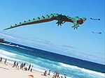 Crocodile - Festival of the Winds 2012.jpg