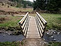 Cycle Bridge in Forest of Ae - geograph.org.uk - 160318.jpg