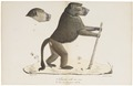 Cynocephalus porcarius - 1818-1842 - Print - Iconographia Zoologica - Special Collections University of Amsterdam - UBA01 IZ20100051.tif